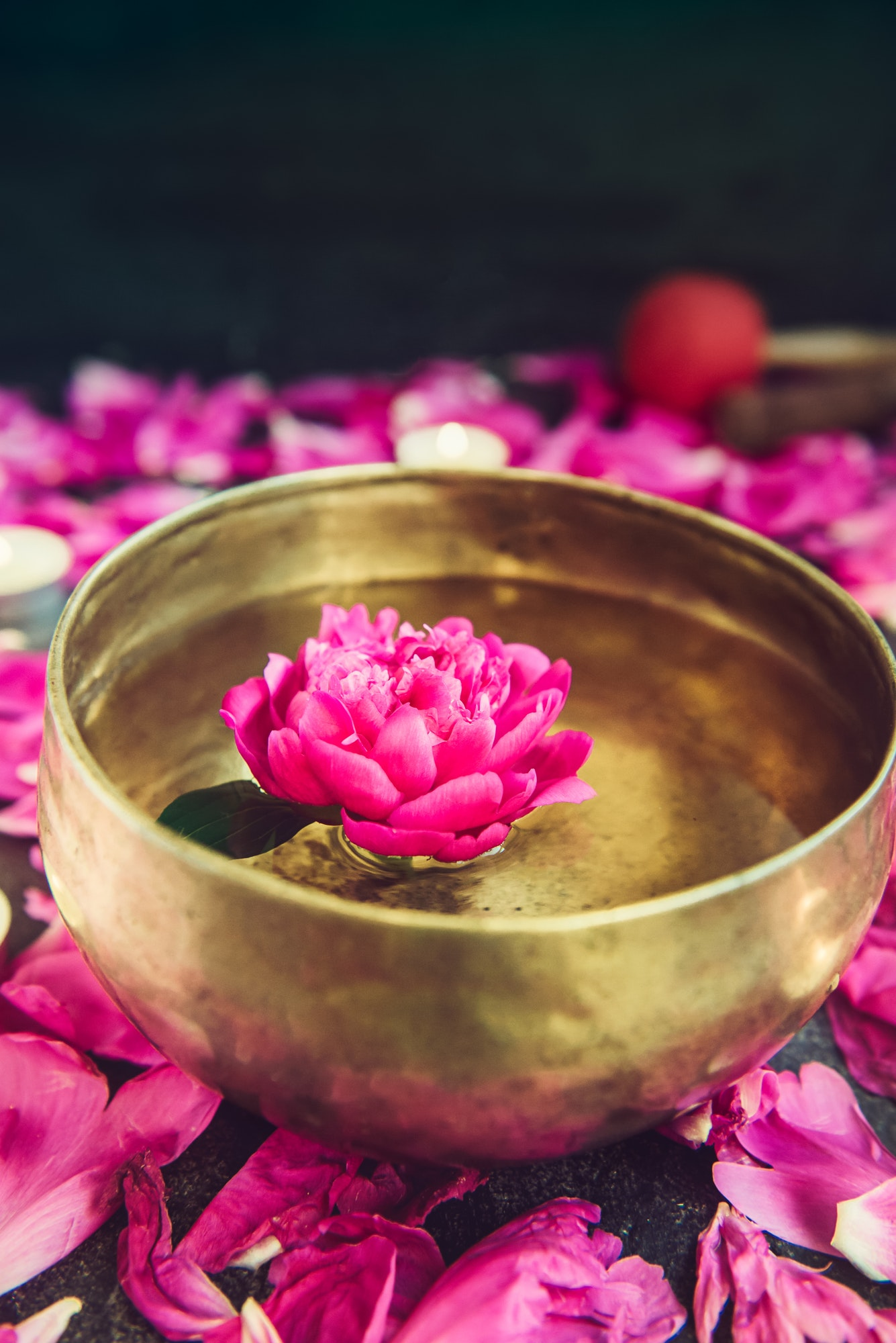 Tibetan singing bowl with floating inside in water purple peony flower. Burning candles, special sti